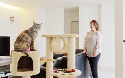 デザイナーが建てたネコちゃんと暮らす家