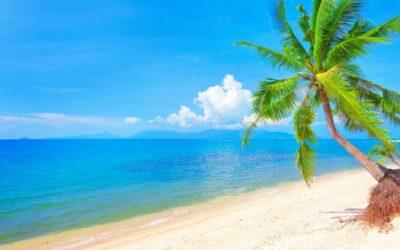 [7月あおぞらDIY]第2回親子で家づくりコンテスト「夏!海が見える家」